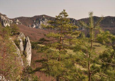 Za jarnou kvetenou a rebríkmi na Súľovský hrad