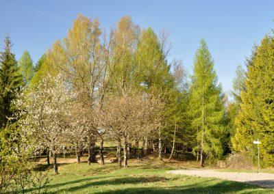 Na Mravečniku – veľhore Kysuckej vrchoviny