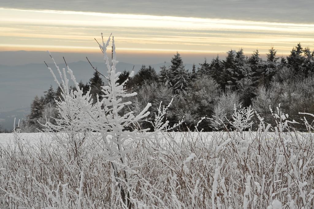 Na zimnej Veľkej Javorine