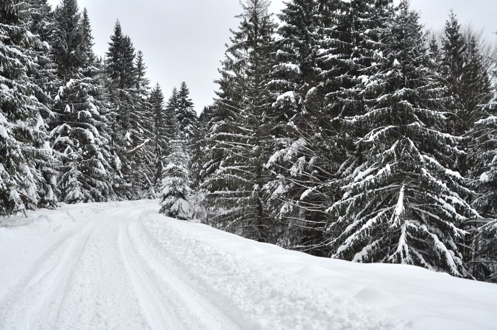 Na zimnej prechádzke ku novej veži v Harvelke na Kysuciach