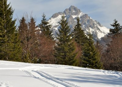 Za skialpinistami na Poludňovom grúni