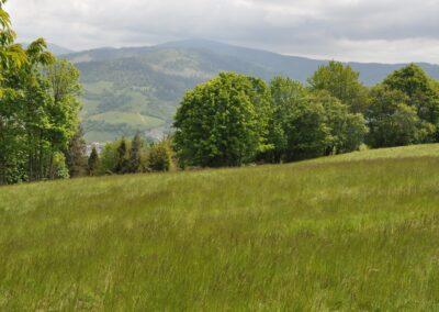 Pod hrebeň Javorského nad Oščadnicou