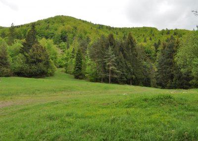 Lesnou cestičkou cez osadu Sidorovci popod hrebeň  Stien